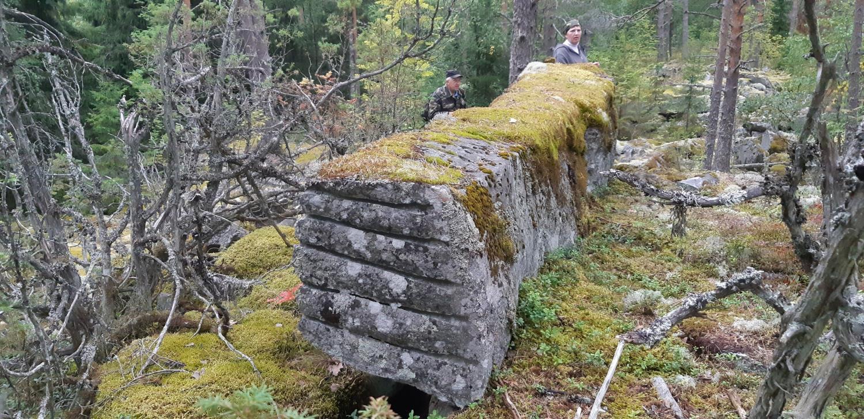 Каменоломни острова Тулолансаари. Автор Борисов И. В., изображение №4