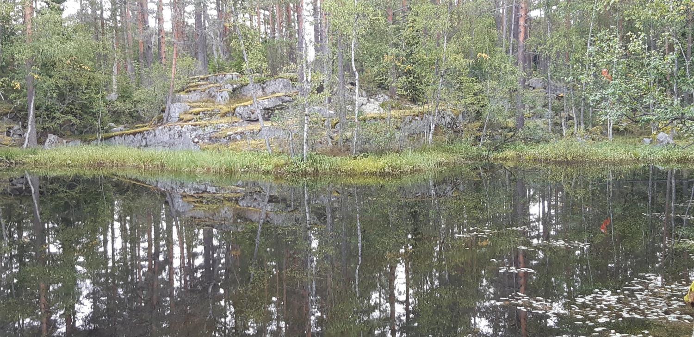 Каменоломни острова Тулолансаари. Автор Борисов И. В., изображение №6