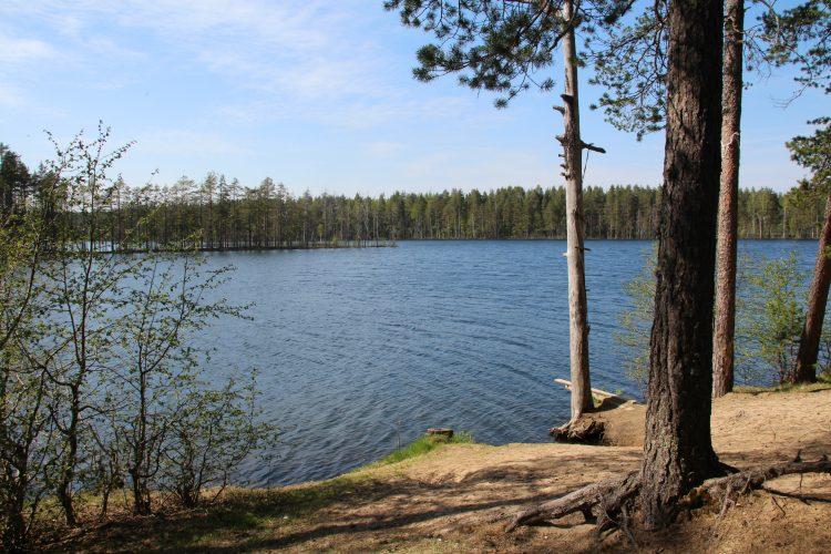 Озера Саариярви и Мериярви
