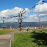 Прибрежный парк, Петрозаводск