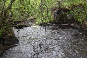 Плотина на реке Пёткя