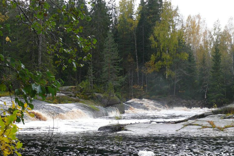 """Один из самых красивых порогов на реке Ууксунйоки - Jukakoski с фотографиями и картой проезда. Среди первых водников, до 2000 годов порог имел название - Лапа. Лоция 1999 г - \"""" Порог..."""