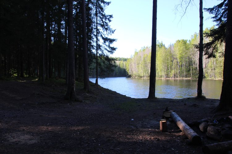 Поляна на реке Янисйоки