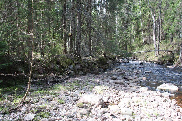 Руины на ручье Туннисеноя