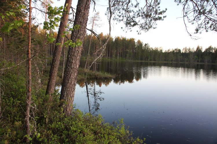 Система Озер Лаваярви-Сяксъярви
