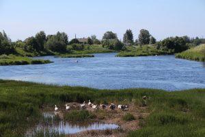 Река Мегрега